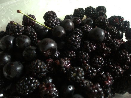 Blackberries and cherries